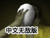 死灵之书中文无敌版