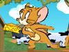 猫和老鼠抢奶酪