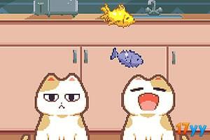 猫咪接小鱼