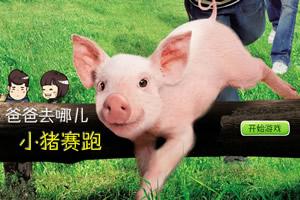 爸爸去哪儿小猪赛跑