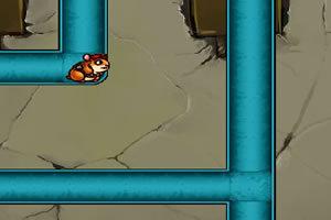 小仓鼠修管道