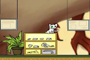 白猫女神偷