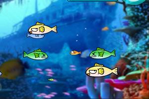 可爱版大鱼吃小鱼