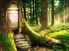 魔法森林逃生