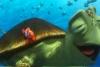 海底总动员找数字
