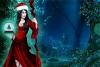 救援圣诞女精灵
